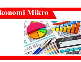 Memahami-ekonomi-mikro-teori-contoh-komponen-dan-peran